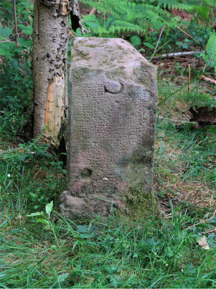 Grenzstein7